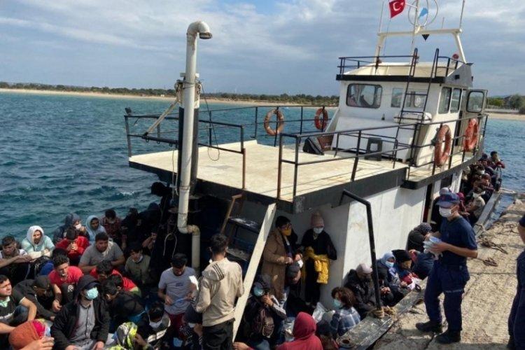 Çanakkale'de 251 kaçak göçmen yakalandı