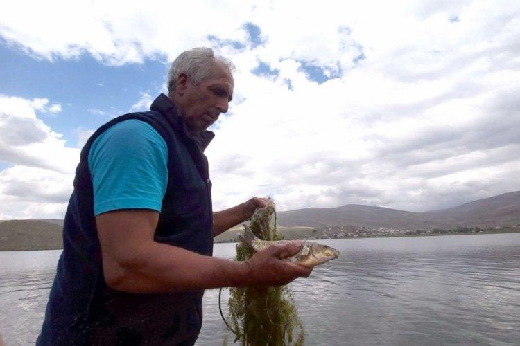 Çıldır Gölü'nde balıkçılar ağlarını attı