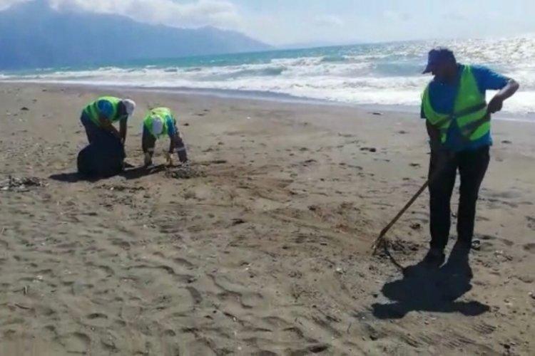 Hatay Samandağ'da petrol atıkları temizliğine devam ediliyor