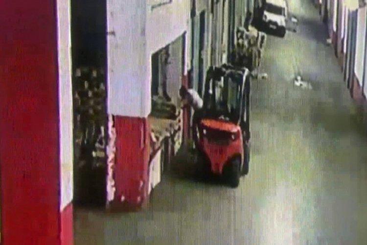 İstanbul Bayrampaşa'da cani adam kediyi tekmeleyerek öldürdü