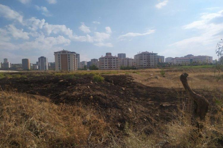 Ankara'da yıldırım düştü otluk alanda yangın çıktı