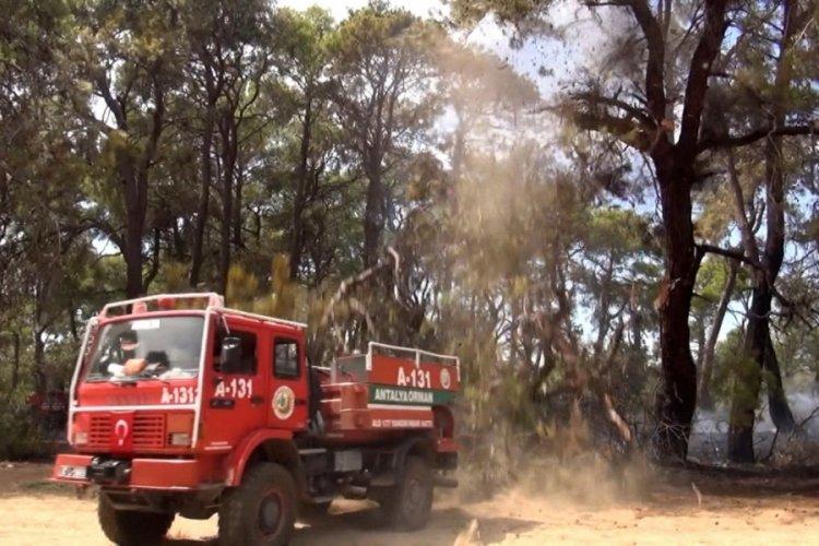 Antalya'da bir kişi ağacın altında kalmaktan son anda kurtuldu