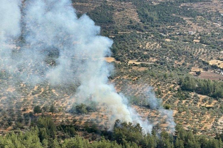 Muğla'da çıkan 10 yangın söndürüldü
