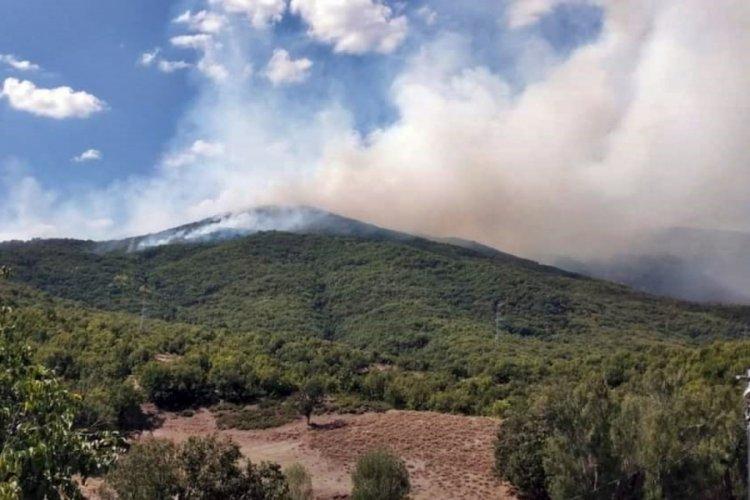 Tunceli'nin Otlubahçe köyünde örtü yangını!