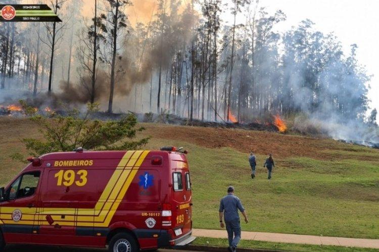 Brezilya'da küçük uçak düştü: 7 ölü