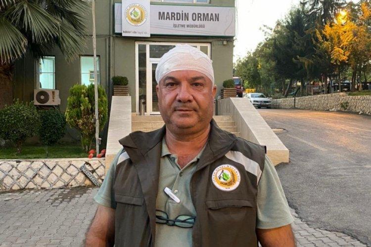 Mardin'de kaçak kesim yapanlar, orman görevlilerine saldırdı