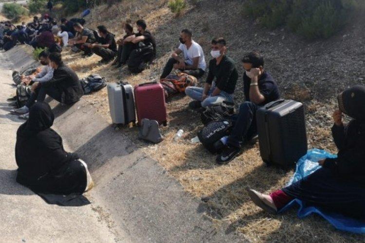 İzmir Urla'da göçmenler kaçtı, jandarma kovaladı