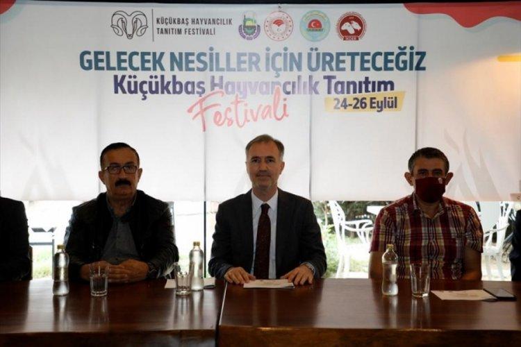 Bursa İnegöl Küçükbaş Hayvancılık Festivaline ev sahipliği yapacak
