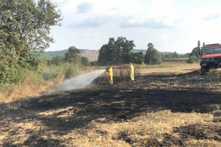 Çanakkale'de anız yangını meydana geldi