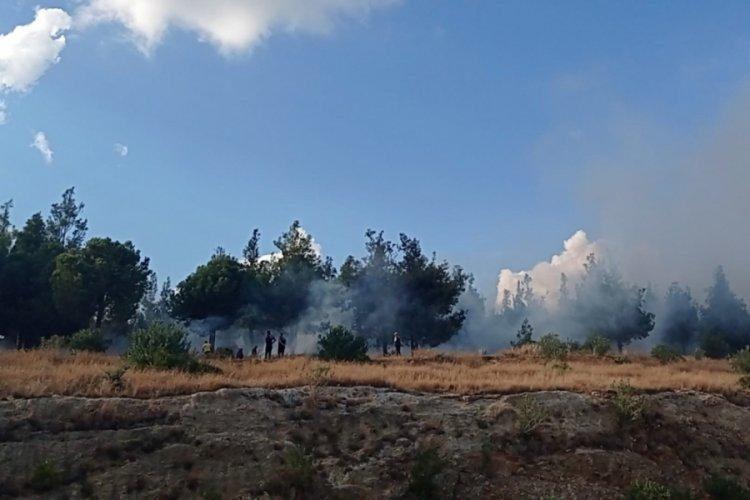 Adana 100. Yıl Hatıra Ormanı'nda korkutan yangın!