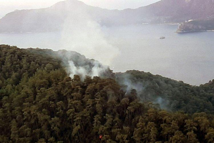 Muğla'da yıldırım düşmesi sonucu 37 yangın çıktı