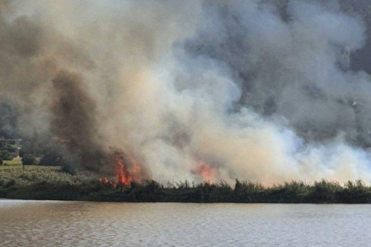 İzmir'de sazlık alanda meydana gelen yangın söndürüldü