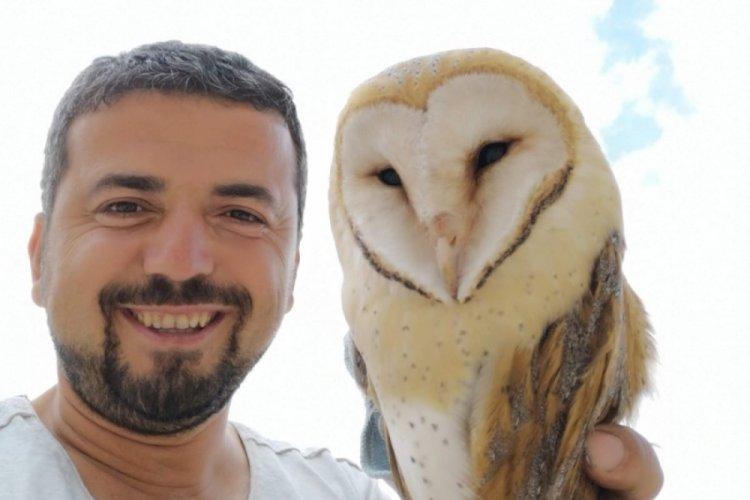 Bursa'da evin içine giren baykuşu böyle kurtardı