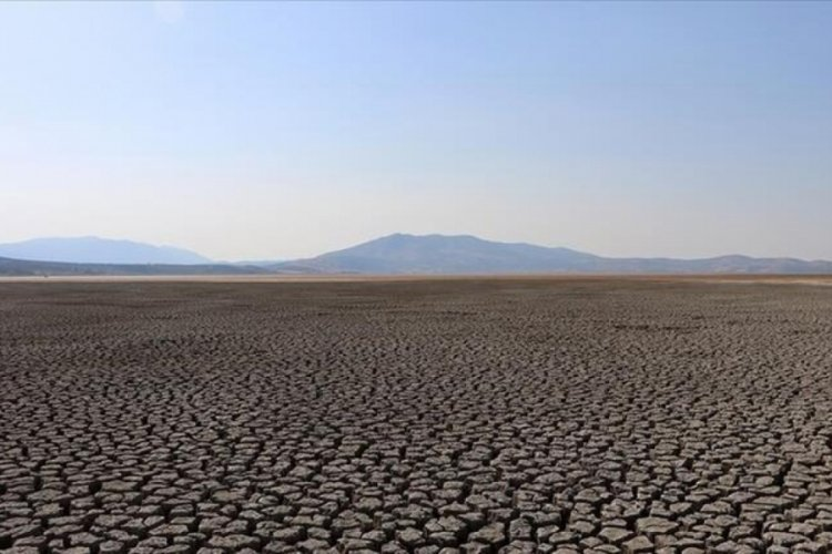 Google'dan 'iklim değişikliği' reklamları hakkında karar