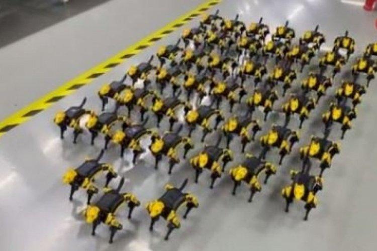Çin'de geliştirilen evcil hayvan şeklindeki robotlara ilgi giderek artıyor