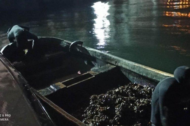 İzmit'te kaçak midye avlayan 6 kişi yakalandı