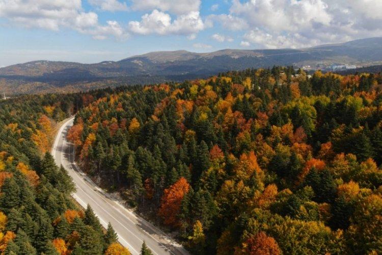 Bursa Uludağ'da sonbahar güzelliği