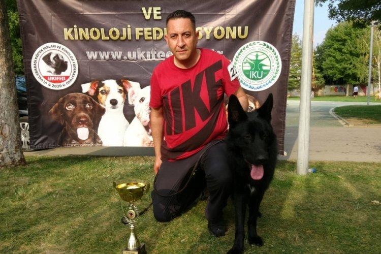 Bursa'da 'Köpek Güzellik ve Irk Yarışması' düzenlendi