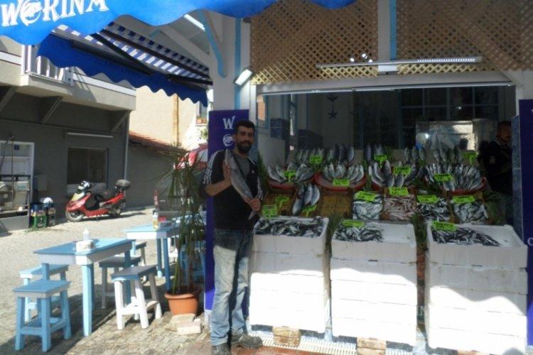 Marmara'da sıcaklık düşünce Bursa'da balık fiyatları geriledi