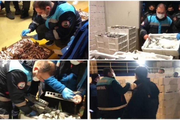 İstanbul Gürpınar Hali'nde 5 ton balığa el konuldu