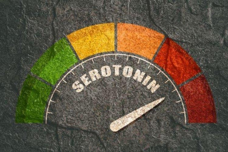 Serotonin nasıl artar? Serotonin miktari ve seviyesini artıran nedenler nelerdir?