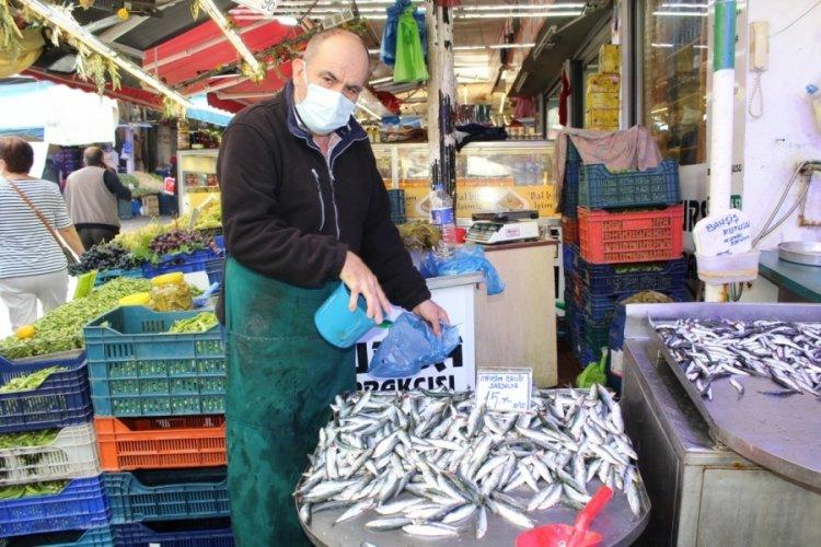 Bursa'da sardalya fiyatları ucuzladı