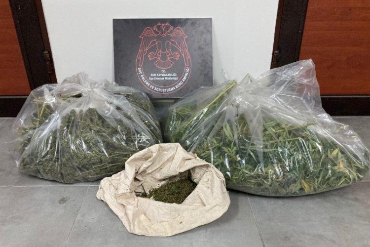 Diyarbakır'da hint keneviri ektikleri UNESCO listesindeki Hevsel Bahçeleri'nde yakalandılar