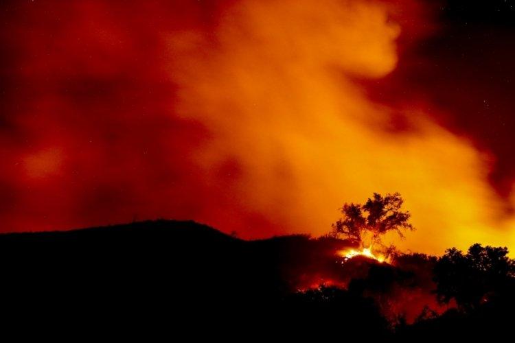 California'da yangın: 5 bin 500 hektar alan kül oldu