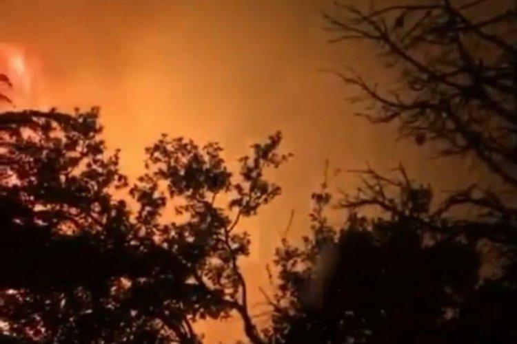 Antalya Kemer'de çıkan orman yangını nedeniyle turistler tahliye edildi