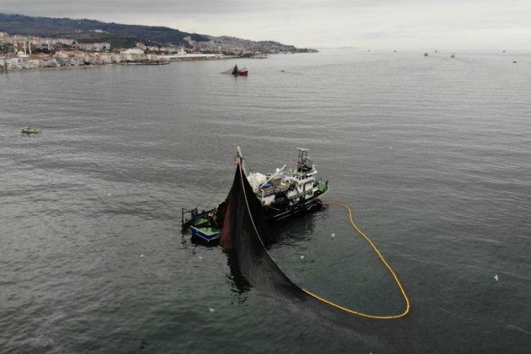 Bursa'da balıkçıların 600 tonluk hamsi avı