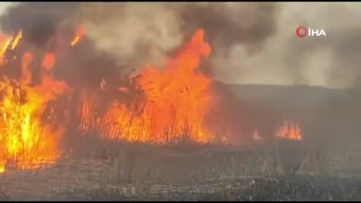 Bursa'da İznik Gölü kıyısında büyük yangın
