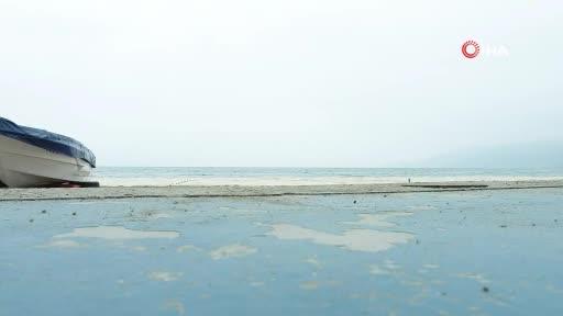 Bursa Gemlik Körfezi'ndeki salya istilası havadan görüntülendi