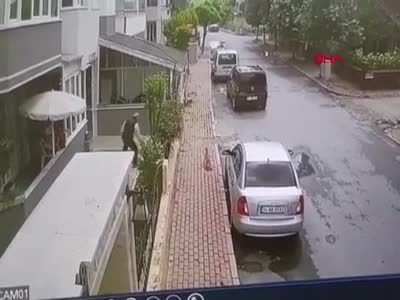 Apartman bahçesine giren kediyi tekmeledi!
