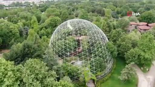 Bursa Hayvanat Bahçesi'nde lemur sayısı 30'a çıktı