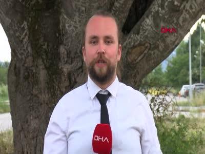 Bursa İznik'teki 'Künye Ağaç'ın koruma altına alınmasını istiyorlar
