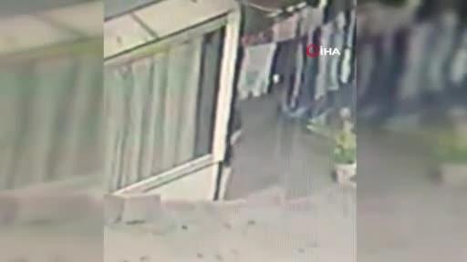 16 yaşındaki kıza 2 pitbull saldırdı