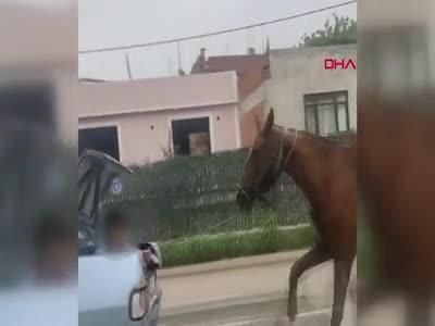 Bursa'da otomobilin bagajındaki kişi, ipe bağlı atı koşturdu