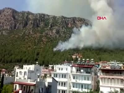 Antalya'daki yangınlarda bin dönüm alan küle döndü