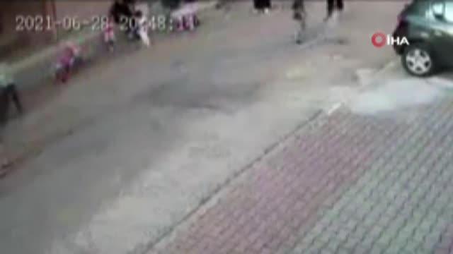 Küçük çocuğa saldıran pitbullun sahipleri adli kontrol şartıyla serbest