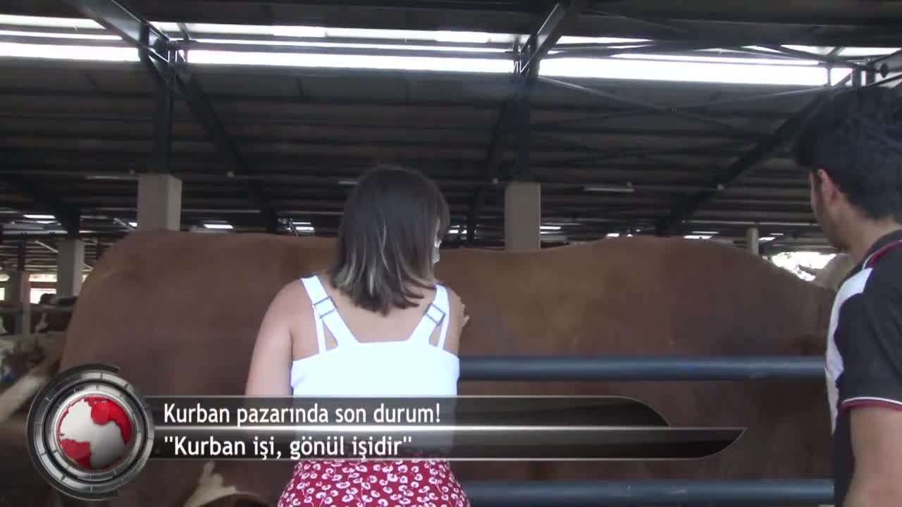 """Bursa'da kurban pazarında son durum ne? """"Fiyat söylemeye utanıyoruz"""" (ÖZEL HABER)"""