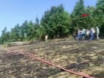 Bursa'da anız yakan çiftçiye dönüm başına ceza!