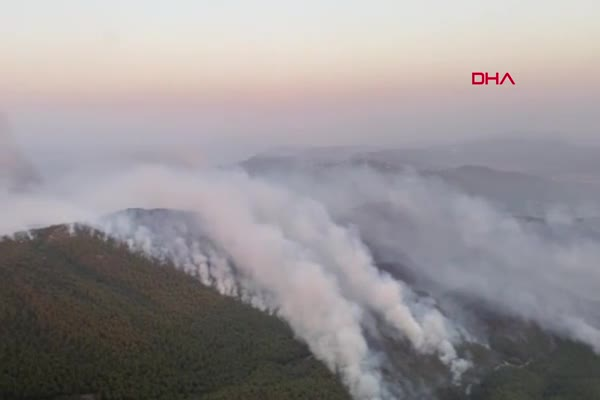 Rüzgarla yön değiştiren alevler Bodrum'un Mazı Mahallesini yaktı