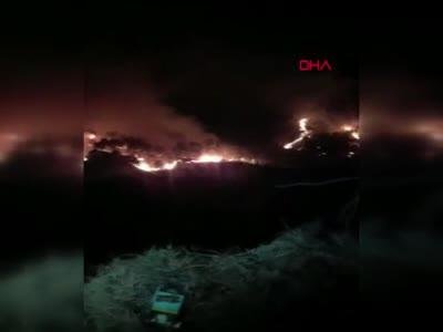 Milas'taki yangında 3'üncü gün! Havadan müdahale yeniden başladı