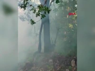 Bursa'da orman yangını büyümeden söndürüldü!