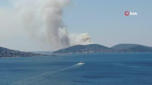 Heybeliada'da ormanlık alanda yangın
