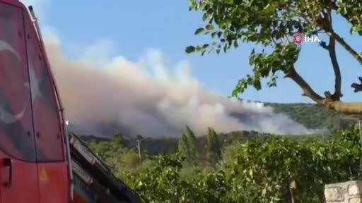 Bursa Mudanya'da orman yangını!