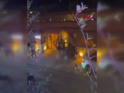 İzmir Çeşme'de gece kulübünde bıçaklı kavga!